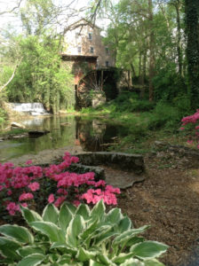 Mill in Spring